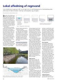 Lokal afledning af regnvand - fra Grønt Miljø 3 ... - Herning Vand A/S