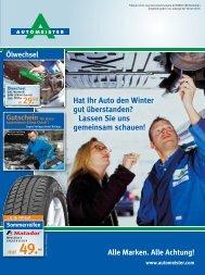 Hat Ihr Auto den Winter gut überstanden? Lassen ... - AUTOMEISTER