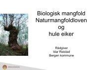 Biologisk mangfold Naturmangfoldloven og hule eiker