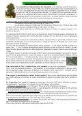 BM n12 entier - Isserteaux - Page 6