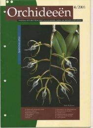 2001 - 4 - Orchideeën Vereniging Vlaanderen