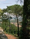 -vårt italienske slott - Castello di Montegiove - Page 2