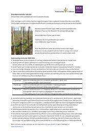 Praktijkproef snoei & opkweek rode bes - DLV Plant