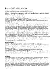 Det kan hurtigt gå galt i Tyskland - Høxbroe Consulting