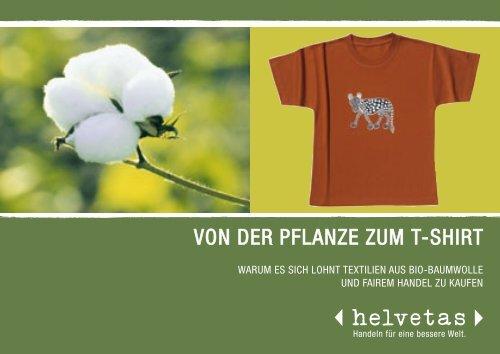 Von der Pflanze zum T-Shirt (Bio-Baumwolle