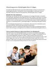 Inhoud programma: Marketingplan klaar in 4 dagen.