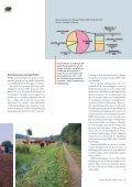 Mange fluer med et smæk - Det Økologiske Råd - Page 2