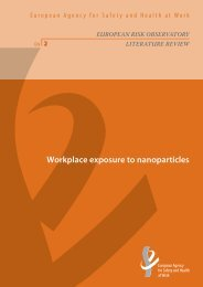 Workplace exposure to nanoparticles - European Agency for Safety ...