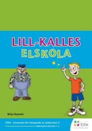Lill-Kalles Elskola (PDF)