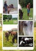 versie 0.2 - Dierenwelzijn in Nederland - Page 4