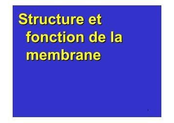 membrane plasmique - Poly-Prepas
