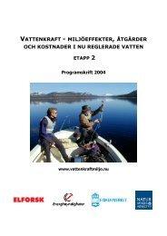Statusrapport per juni 2004 för programmet och ingående projekt