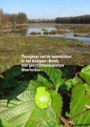 terugkeer van de boomkikker in het Kempen~Broek - ARK ...