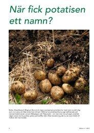 Potatisen och dess namn (pdf) - Fobo