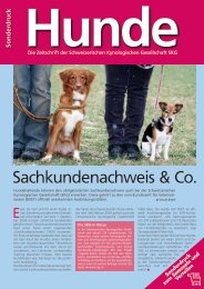 Sachkundenachweis & Co. - Hunde 1x1