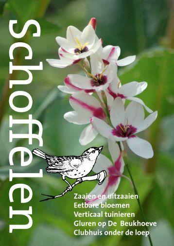 Scho≠elen Zaaien en uitzaaien Eetbare bloemen Verticaal ...