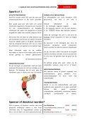 Download - Volleybalvereniging DOS - Page 5