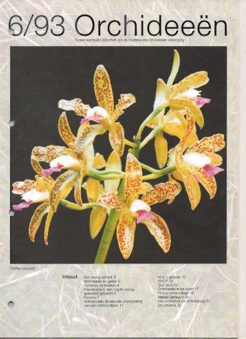 1993 - 6 - Orchideeën Vereniging Vlaanderen