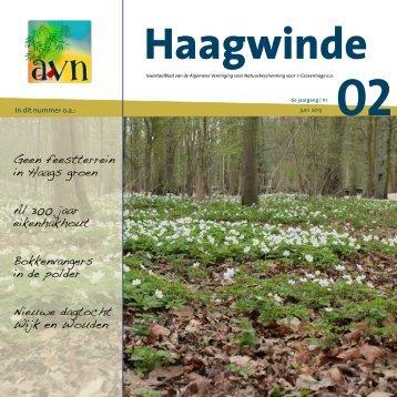 Haagwinde 2 - AVN