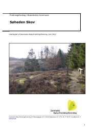 Søheden Plantage - Danmarks Naturfredningsforening