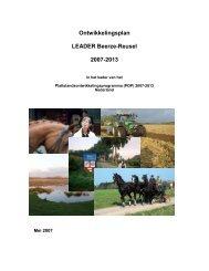 Ontwikkelingsplan LEADER Beerze-Reusel 2007-2013 - Netwerk ...