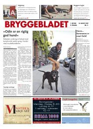 Nr. 11-2009 - Bryggebladet