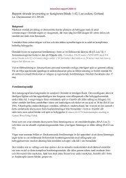 Rapport Bönde i Lau - ArkeoDok