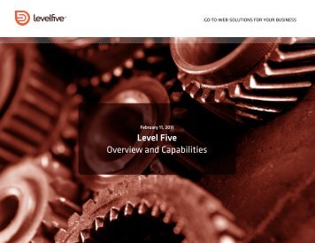 Level Five Overview and Capabilities - Level Five Solutions