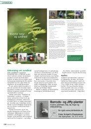 Sundhed og livskvalitet i naturen - Dansk Skovforening