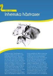 Inhemska hästraser - iFokus