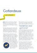 Inhemska hästraser - iFokus - Page 4