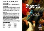Folder om undersøgelsen.pub - SSP Horsens