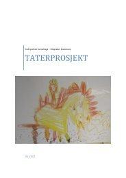 TATERPROSJEKT - Ringsaker kommune