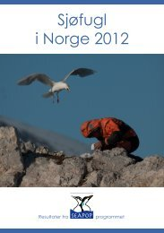 Sjøfugl i Norge 2012. Resultater fra SEAPOP-programmet.
