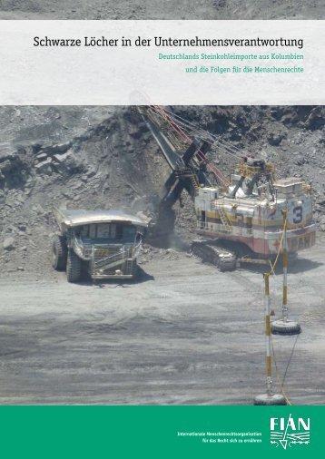 Schwarze Löcher in der Unternehmensverantwortung - Kohleimporte