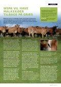 FARVEL TIL FRYGTEN - WSPA Danmark - Page 3