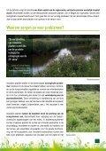 Alternatieven voor invasieven : plant anders - Europa - Page 5