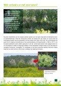 Alternatieven voor invasieven : plant anders - Europa - Page 7