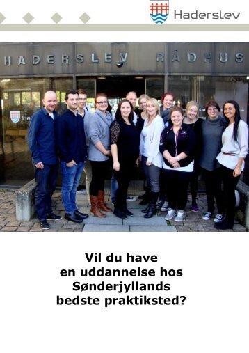 Materiale til elevstillinger 2013 - Haderslev Kommune