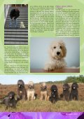 1e artikel - Trimsalon Harig - Page 4
