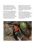 særlige og truede arter og deres levesteder i nationalpark mols bjerge - Page 7
