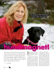 Läs artikeln (PDF 871 KB) - Eva Bodfäldt
