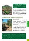 La forêt cultivée : de sa mise en place à sa gestion ... - Province sud - Page 3
