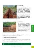 La forêt cultivée : de sa mise en place à sa gestion ... - Province sud - Page 5
