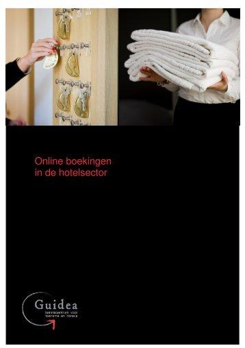 Online boekingen - eindrapport - Guidea - 2008