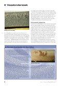 Gesmolten vezels geven doorslag - Nederlands Forensisch Instituut - Page 4