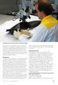 Gesmolten vezels geven doorslag - Nederlands Forensisch Instituut - Page 5
