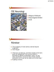 neurologläkaren Magnus Wahlqvists presentation om neuroanatomi ...
