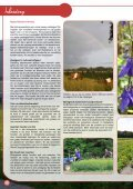Download PDF (15.938,42 Kb) - De Bolster - Page 4
