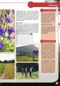 Download PDF (15.938,42 Kb) - De Bolster - Page 5